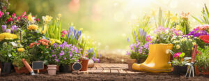 Helpful Springtime Electricity Tips from Your Local Residential Electrician